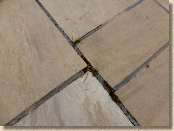 re jointing a patio or driveway