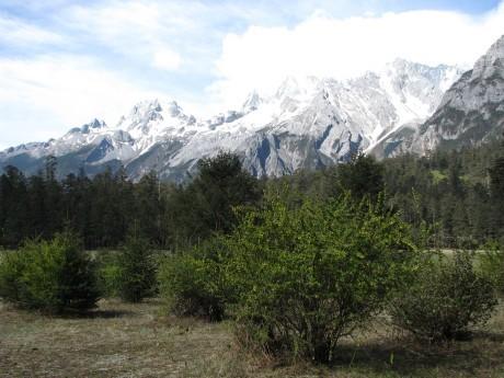 Lijiang - Yulong Snow Mountains 9