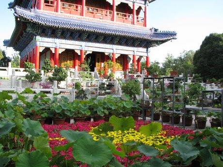Urumqi - odwiedzone przypadkiem 17