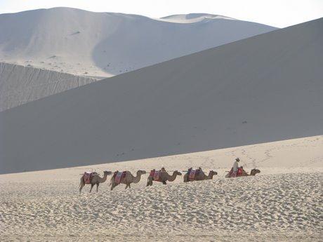 Dunhuang - pustynia, wielbłądy ibuddyjskie groty 11