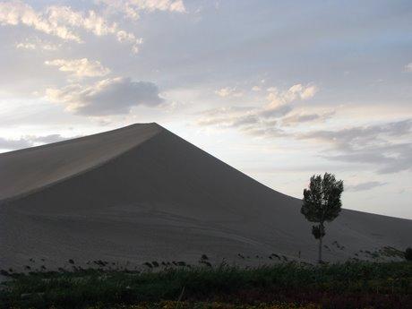 Dunhuang - pustynia, wielbłądy ibuddyjskie groty 39