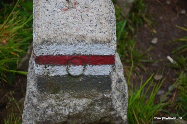 Główny Szlak Beskidzki; Cisna - Połonina Wetlińska (Chatka Puchatka) 7