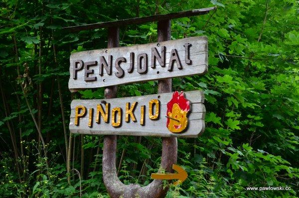 Główny Szlak Sudecki; Schronisko Andrzejówka - Schronisko PTTK Zygmuntówka 14