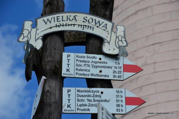 Główny Szlak Sudecki; Schronisko Andrzejówka - Schronisko PTTK Zygmuntówka 21
