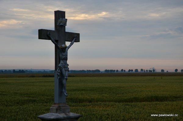 Główny Szlak Sudecki; Piotrowice Nyskie - Schronisko PTTK Pod Biskupią Kopą 34