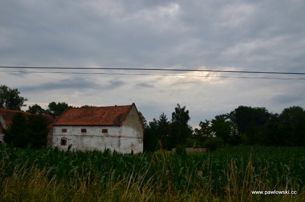 Główny Szlak Sudecki; Piotrowice Nyskie - Schronisko PTTK PodBiskupią Kopą 19