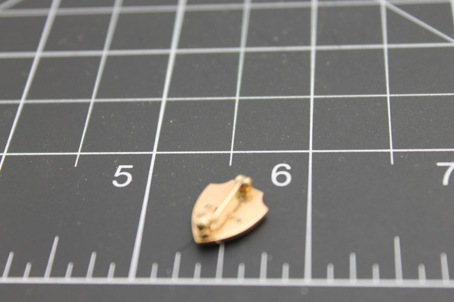 """10 Carat Yellow Gold """"Nurses?"""" Pin Marked """"240"""" and the Initials """"NAPNE"""" with an Aladdin's Lamp Image on the Front 2"""
