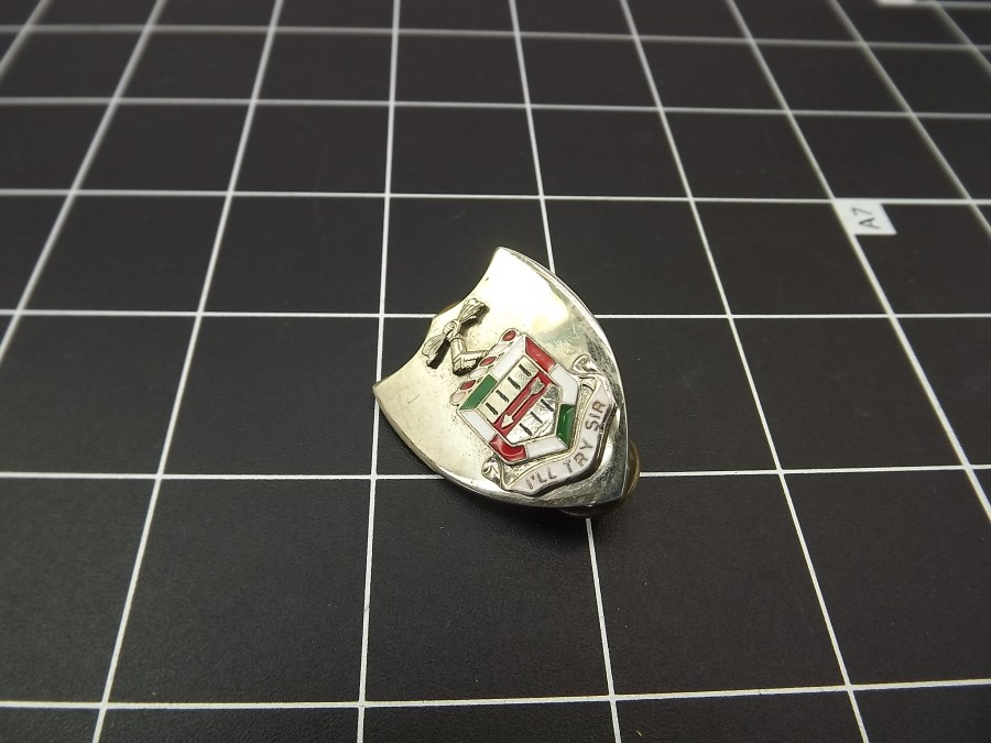 "ANTIQUE SILVER TONE SHIELD ""ILL TRY SIR"" RED WHITE & GREEN ENAMEL LAPEL PIN 2"