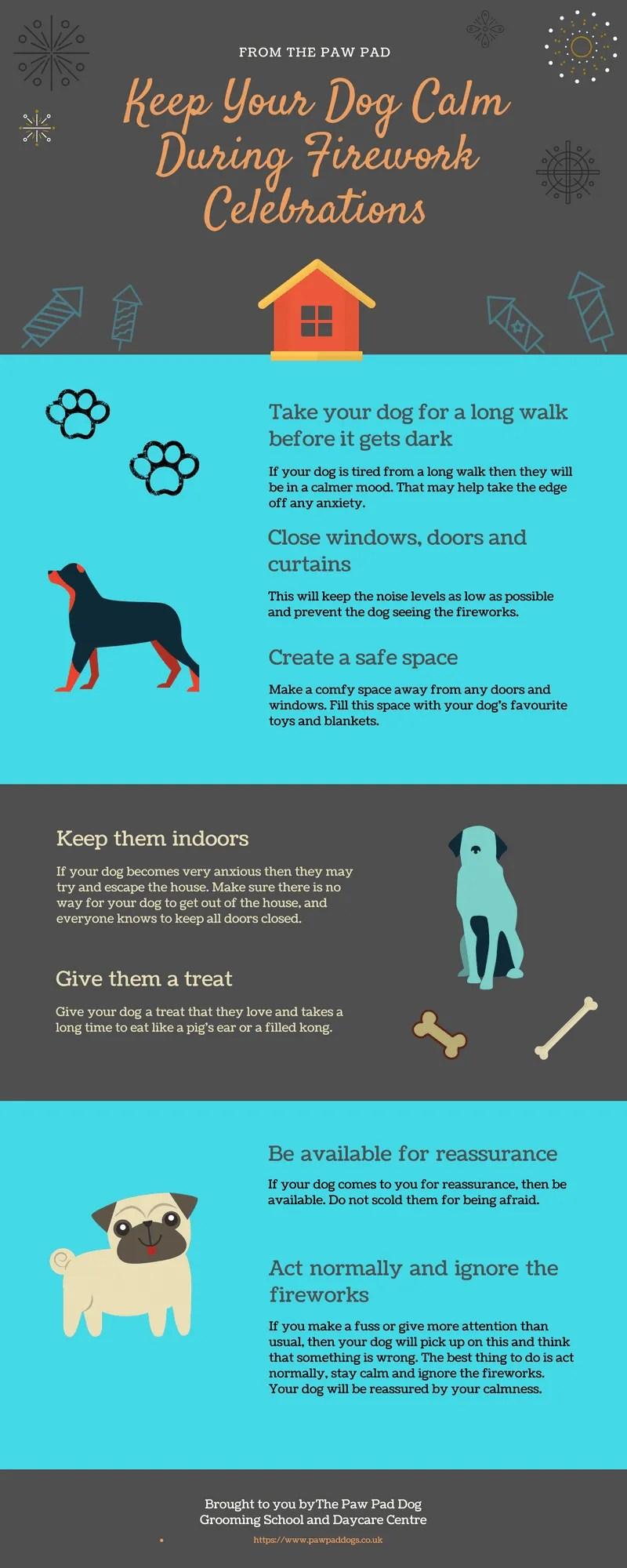 Keep Dogs Calm During Firework Celebrations Infographic