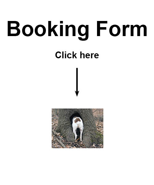 booking form