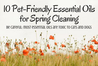 10 Pet-Friendly Essential Oils for Spring Cleaning