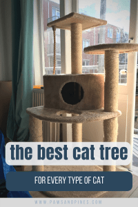 Large cat tree with text overlay 'the best cat tree for every type of cat'