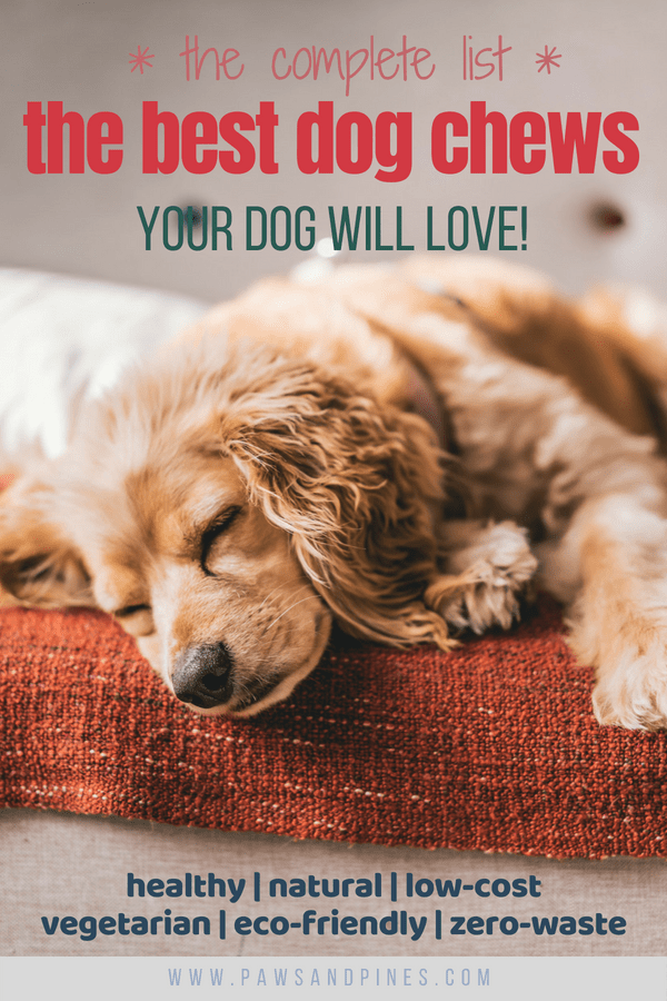 Sleepy dog on sofa with text overlay: the complete list - the best dog chews your dog will love!