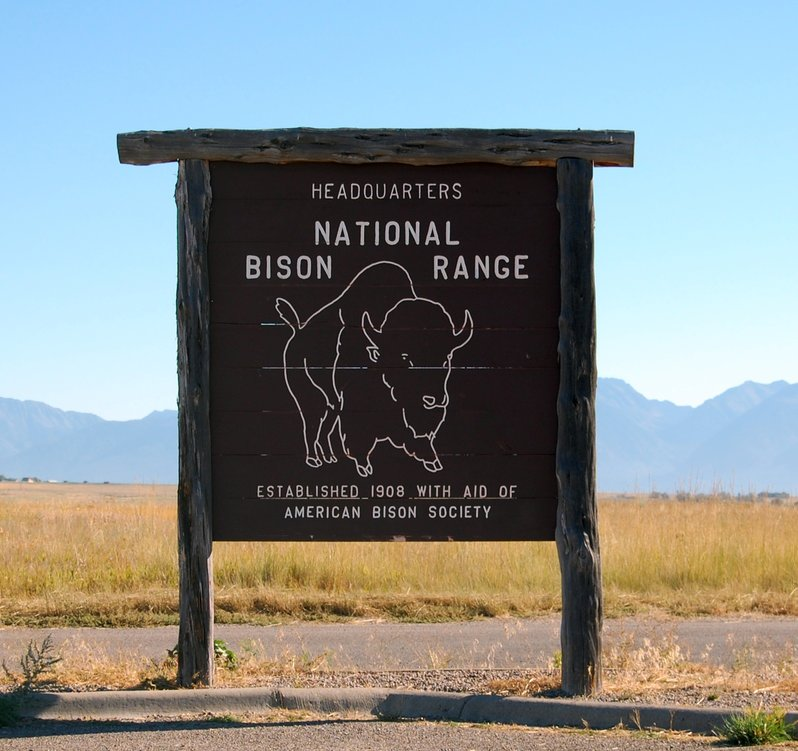 National Bison Range and Flathead Lake Montana