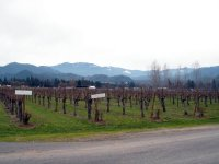 Applegate Valley Wine Tasting, Southern Oregon