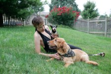 Paws Interview: Crystal Wiebe of Wayward Dogs and Beer Paws
