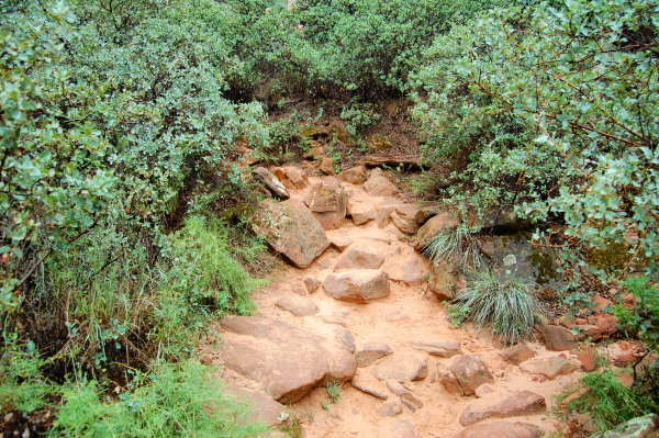 Trail to Upper Emerald Pools