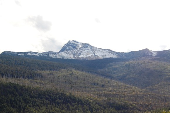 Glacier National Park : Going to the Sun Road