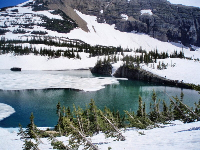 Glacier National Park: Iceberg Lake Hike