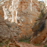 Cottonwood Narrows North Trail, Grand Staircase Escalante National Monument Utah