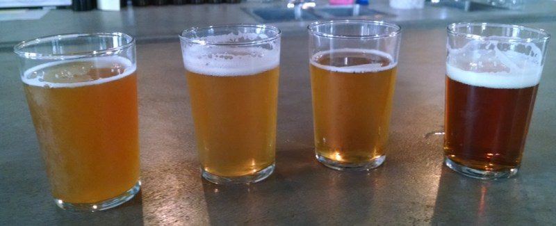 Beer Tasting at Sedition Brewing