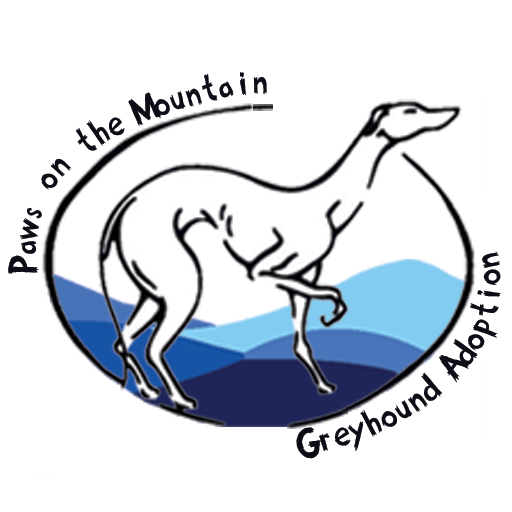 Paws on the Mountain Greyhound Adoption – We place retired racing