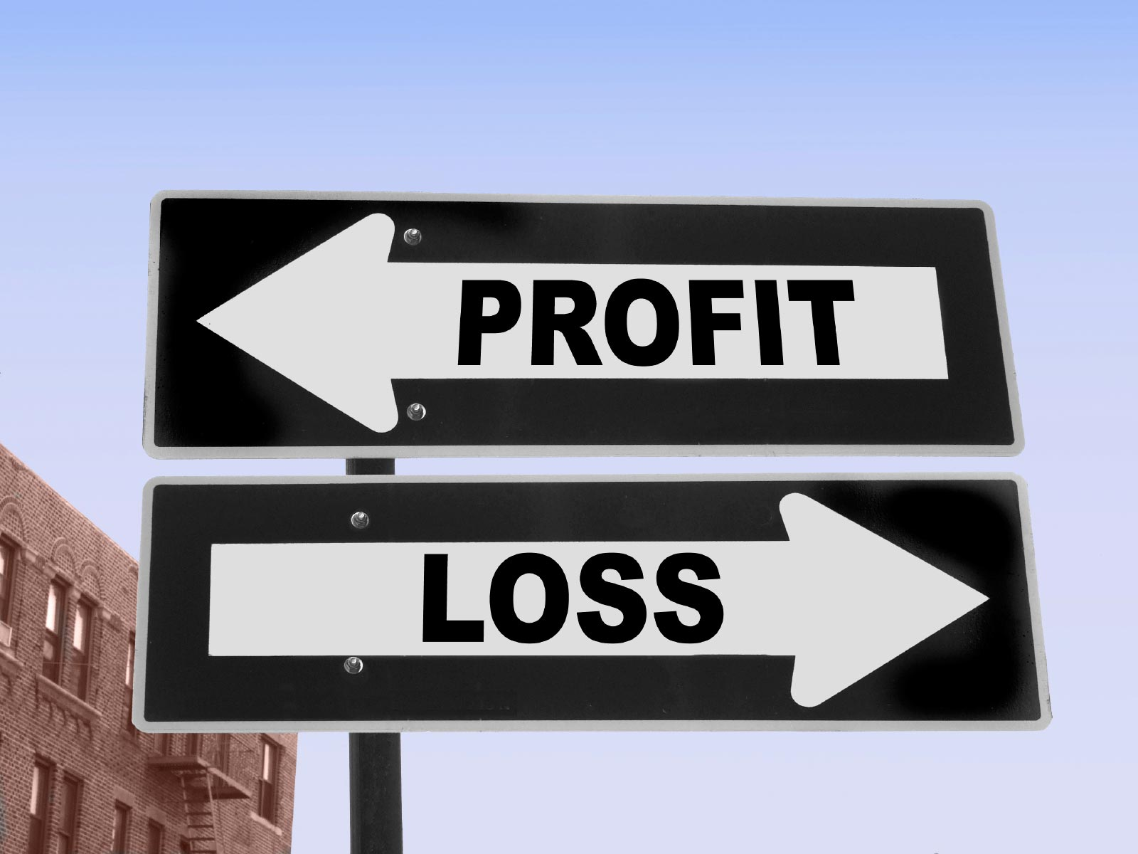 Profit And Loss Statement Capturing Small Business Income