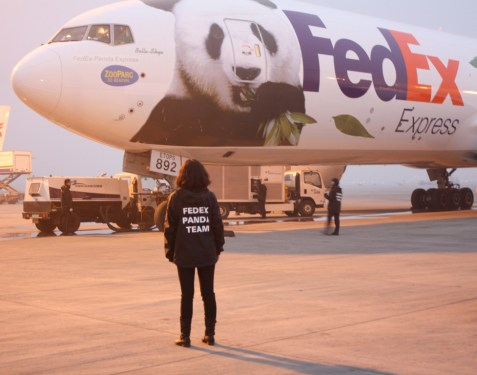 FedEx launches customised freight service ex-China
