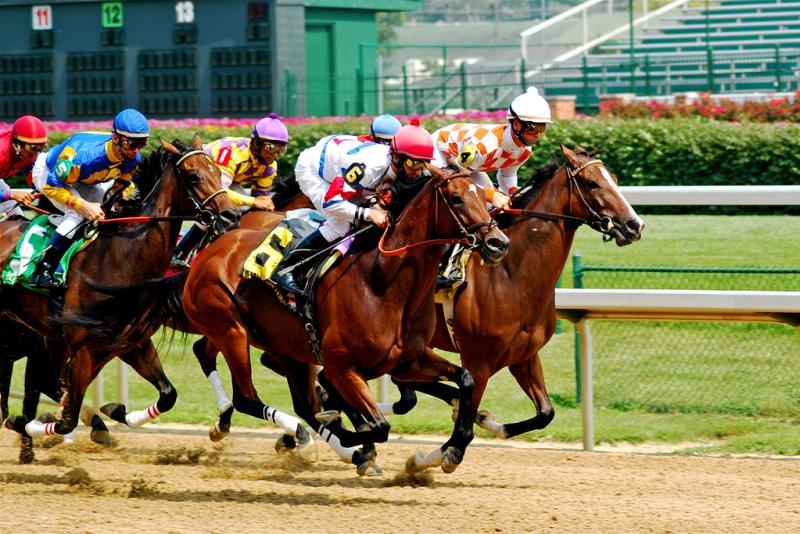 Horse betting types