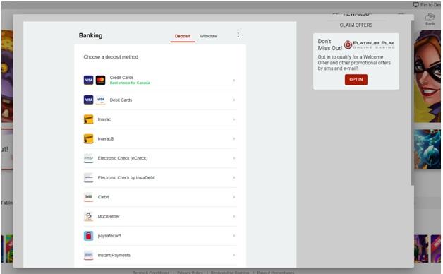 Platinum Play Online Casino Canada Deposit Options