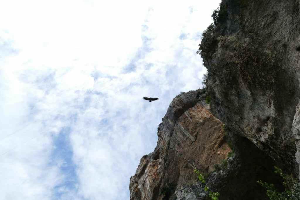 espagne-gorges-lumbier-navarre-pays-basque-randonnée