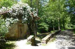Pagoeta-parc-naturel-navarre-en-pays-basque