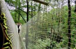 Wow-Parc-de-loisir-hendaye-urrugne-cabane-dans-les-arbres-au-pays-basque