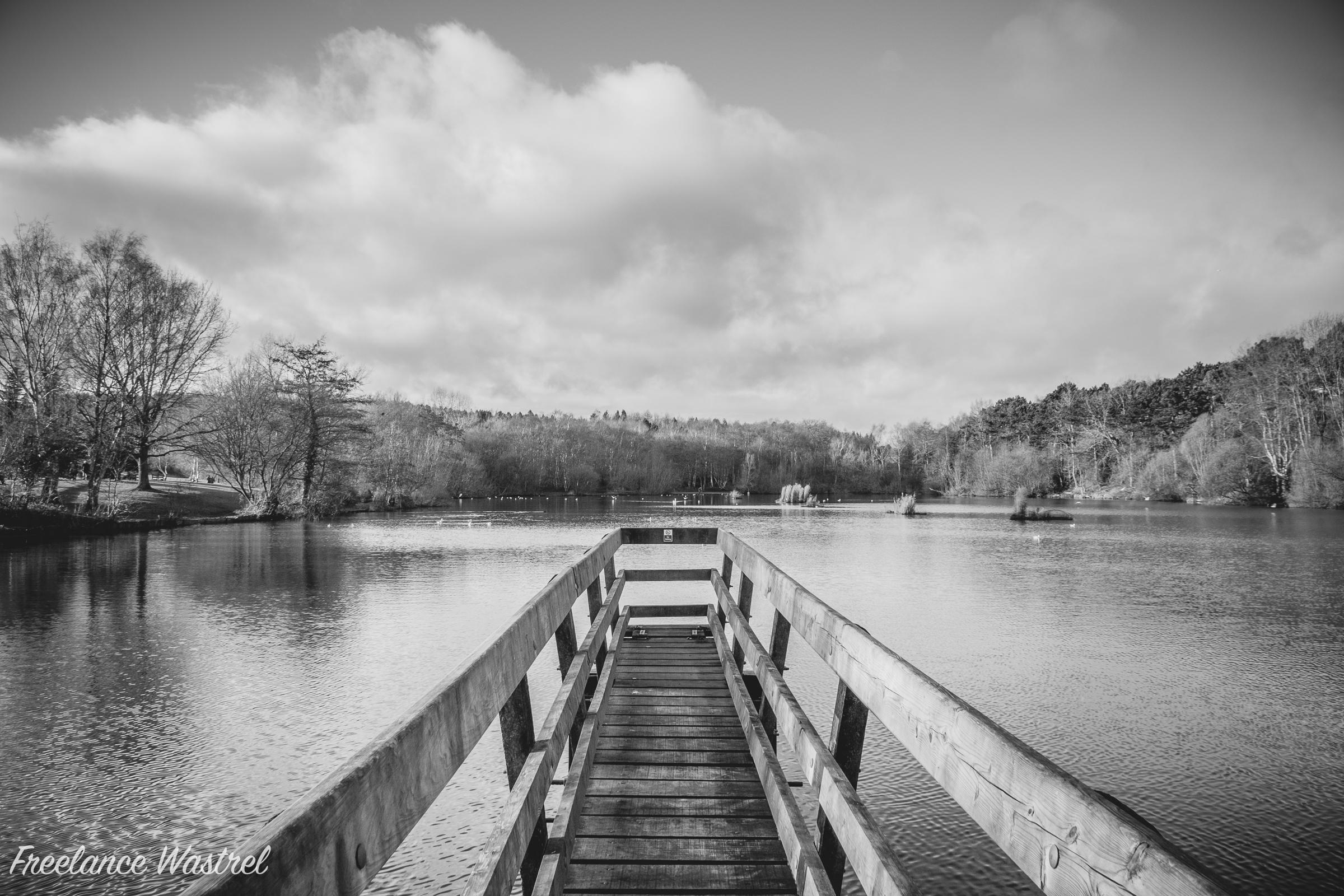 Osborne's Pond, Shipley Country Park