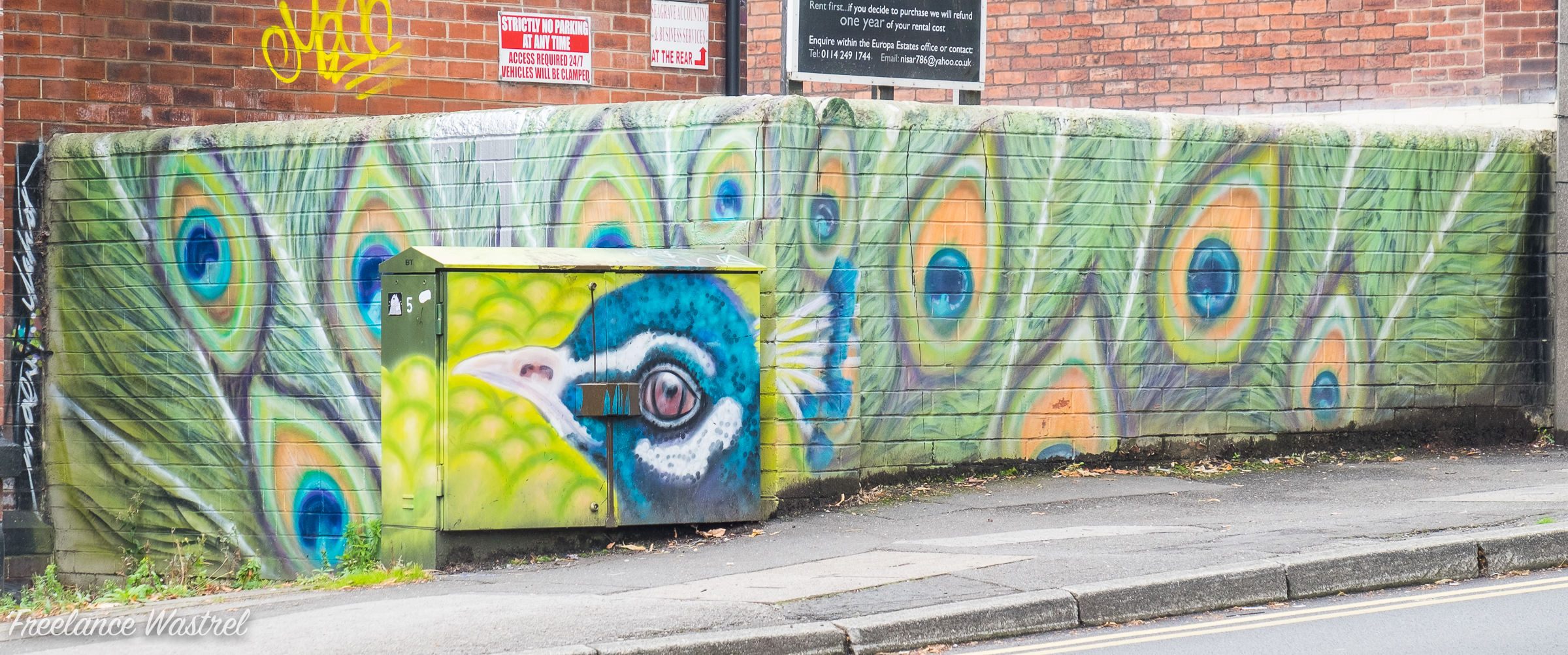 Peacock, Sheffield, September 2017