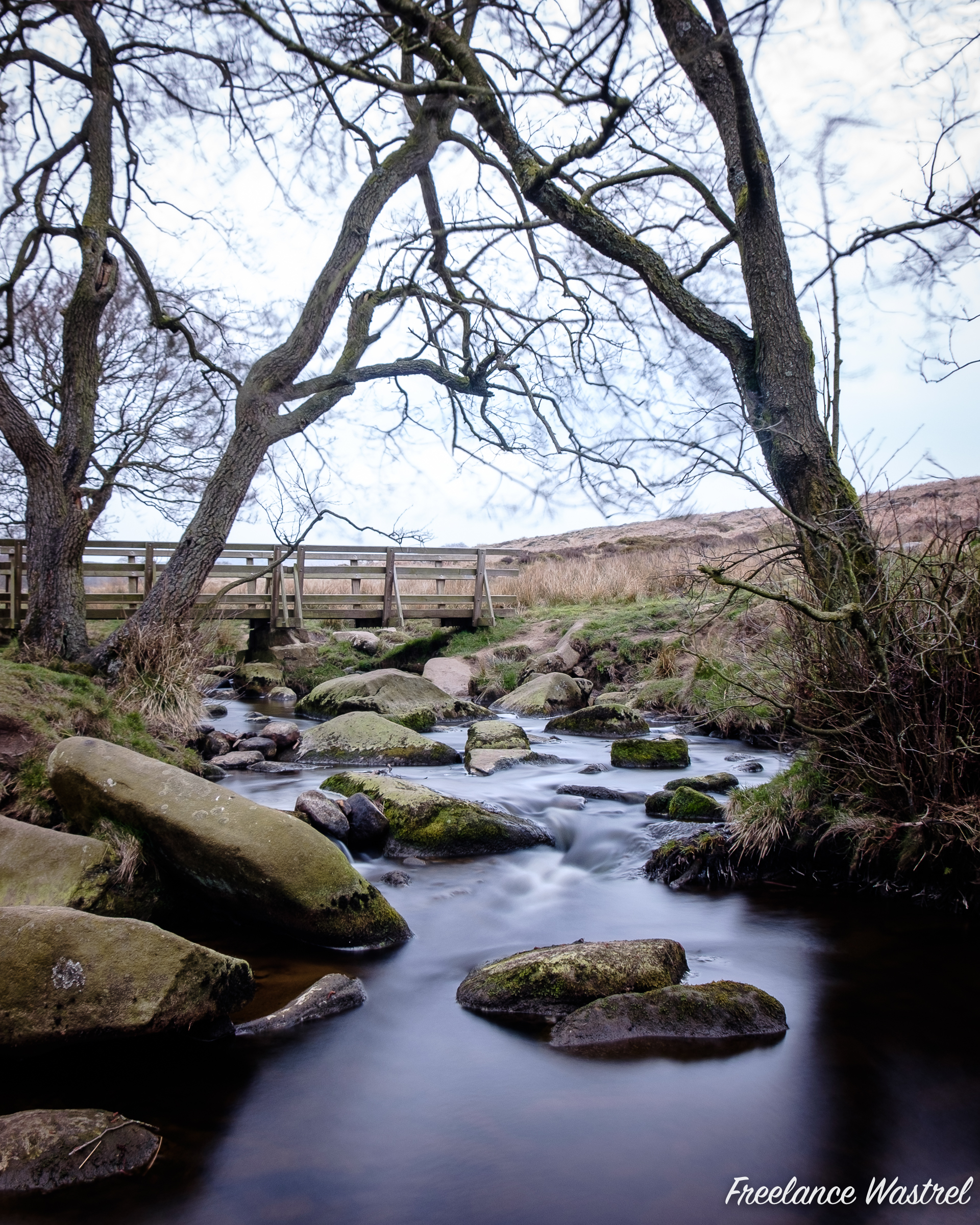 Burbage Brook, April 2019