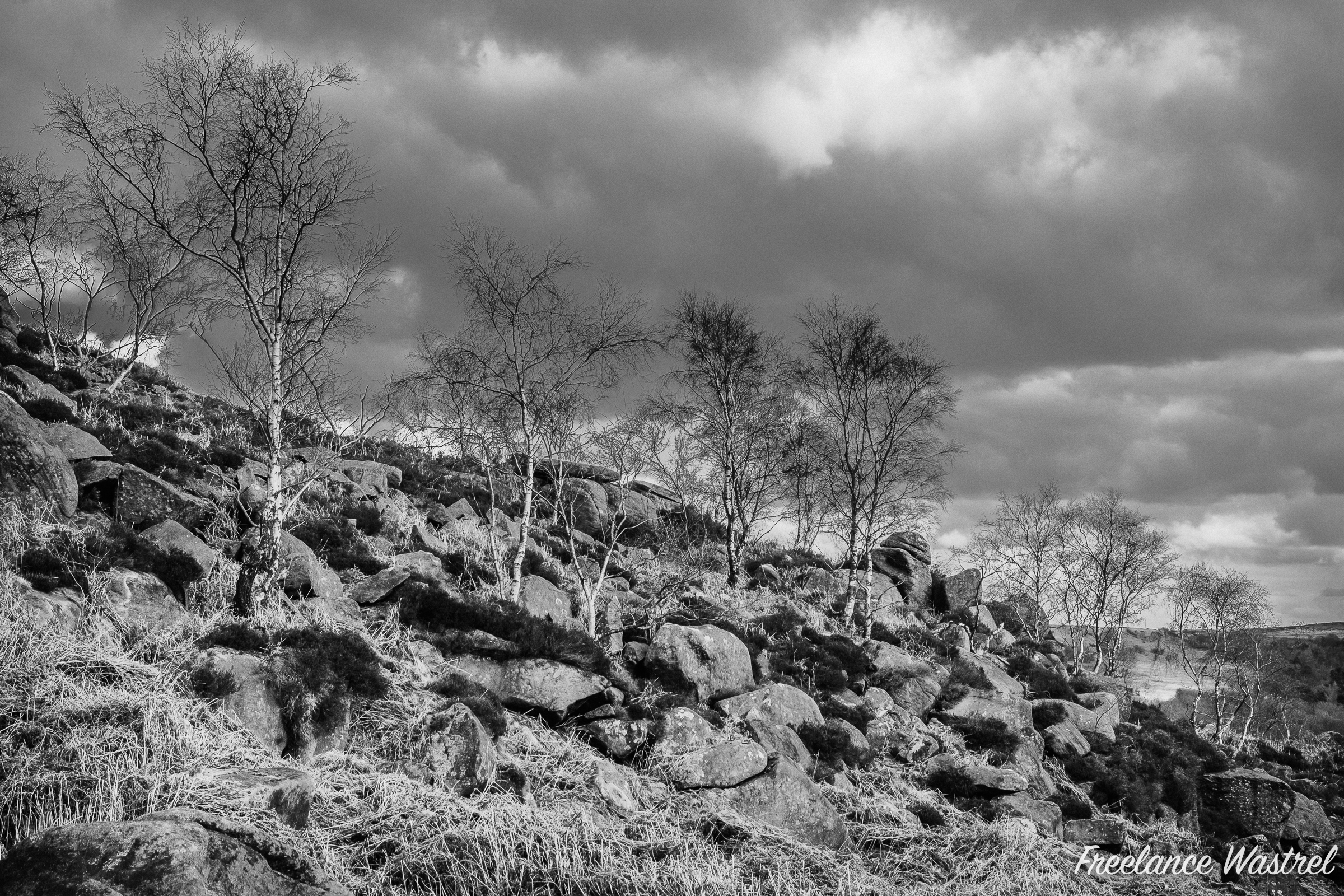 Hathersage Moor, March 2020