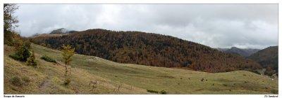 Panorámica del Bosque de Gamueta