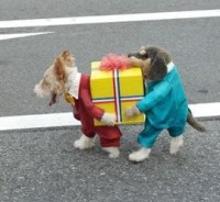 Halloween Costumes for Dogs - Peanut Butter Fingers