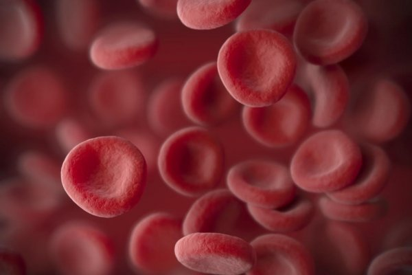 AbbVie submits new drug application in US for AML treatment