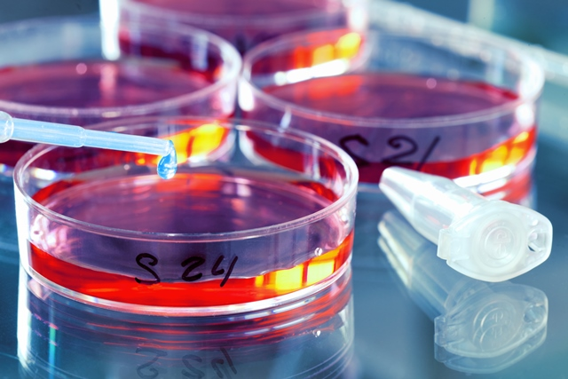 New report reveals trends and priorities for life science industry