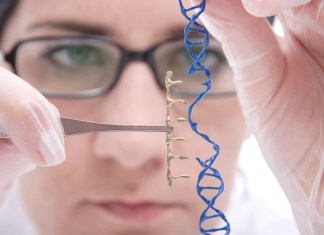 CRISPR Therapeutics & ViaCyte working on cell-derived diabetes therapy