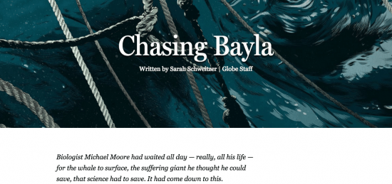 "At first glance -- and sound -- ""Chasing Bayla's"" goal is to immerse its audience. Screenshot courtesy of the Boston Globe."