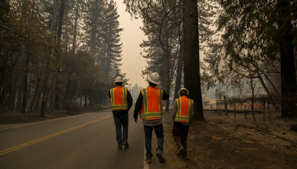 PG&E subcontractors assess vegetation at risk for catching fire near Paradise, Calif. on Nov. 13, 2018, five days after a PG&E transmission line sparked the Camp Fire.