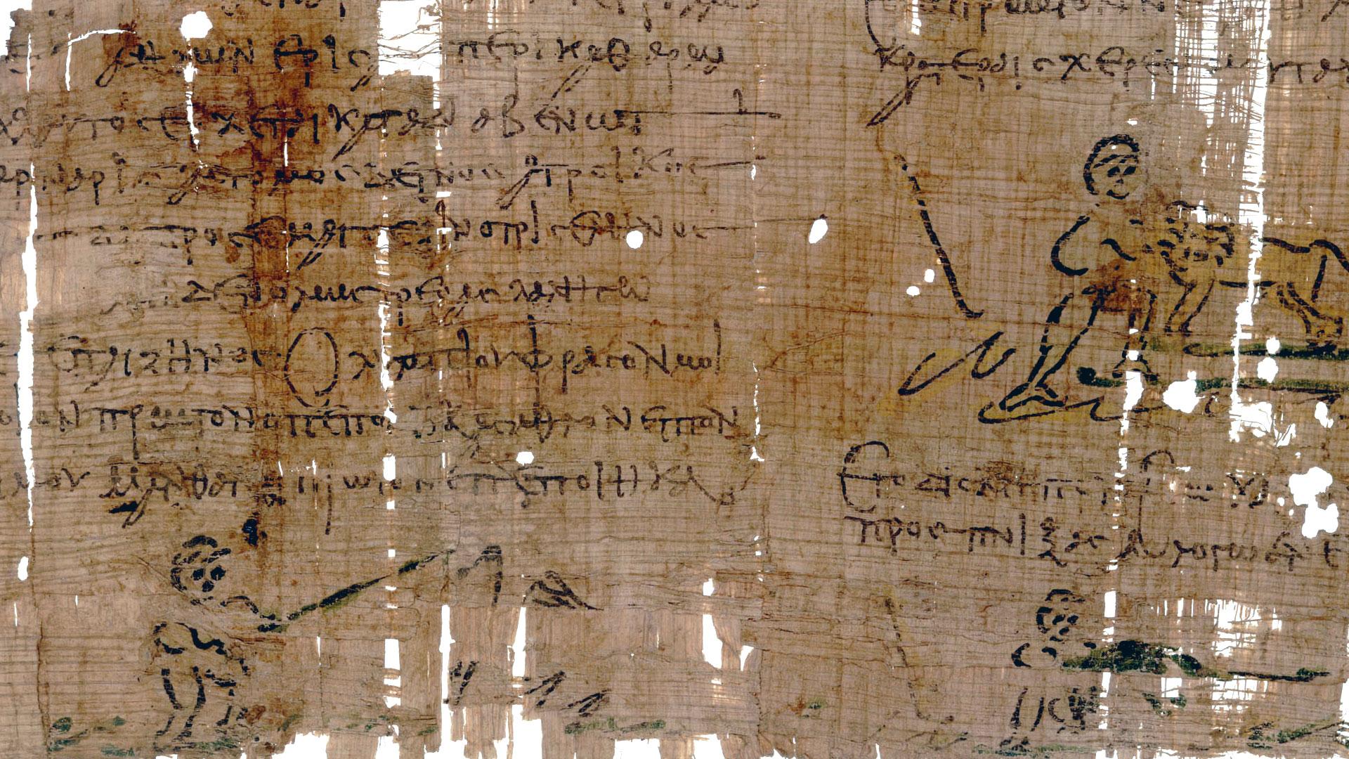 NOVA  Official Website  Papyrus