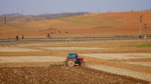 朝鲜的红壤