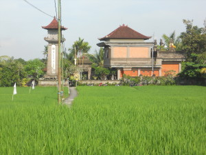 Click on image for a youtube photo journey through the venue, nearby rice patties and Ubud!