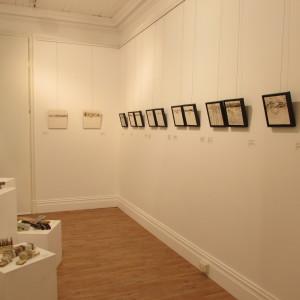 what is making my exhibit look so darn good!