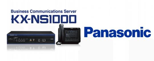 Panasonic NS1000