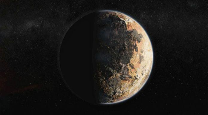 Microbial Life Pluto